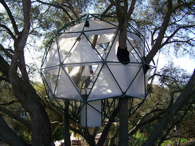 O2 Treehouse (3) 1