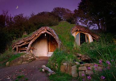 Organic House (2) 1