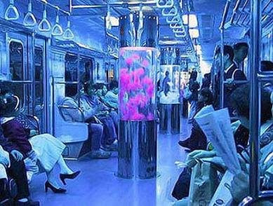 Colors In The Subway (9) 1