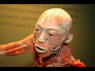 Skin art (11) 7