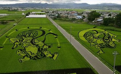 Beautiful Rice Field Art  13