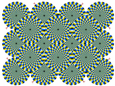 Amazing Illusions  5