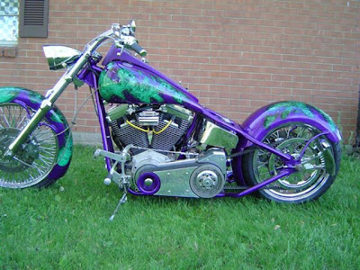 Custom Painted Bikes (15) 10