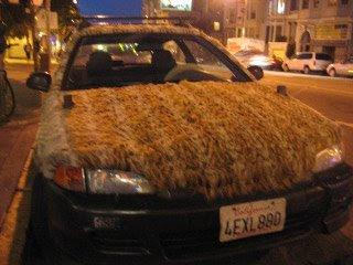 Fur car (3) 3