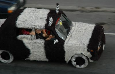 Fur car (3) 1