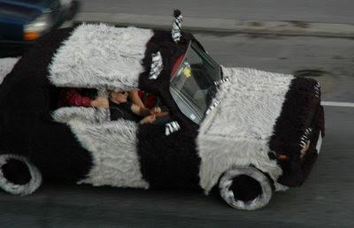 Fur car (3) 1