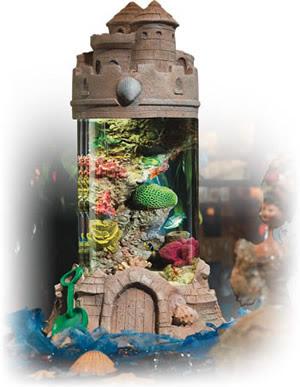 Sandcastle aquarium