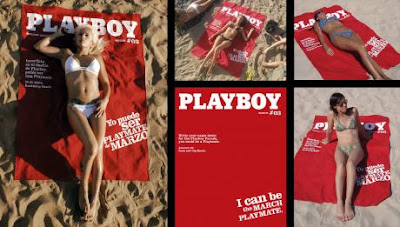 Clever and Creative Towel Advertisements (5) 3