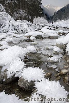 Ice Flowers (6) 3
