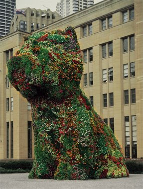 Puppy, The Topiary Dog By Jeff Koons (6) 5