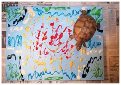 Turtle Art (5) 2