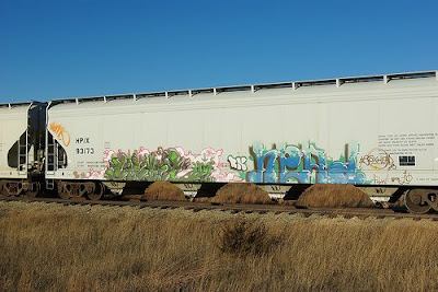 painted train (21) 1