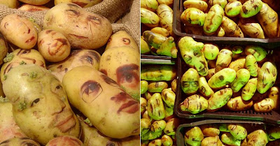 Potato Portraits (2) 2