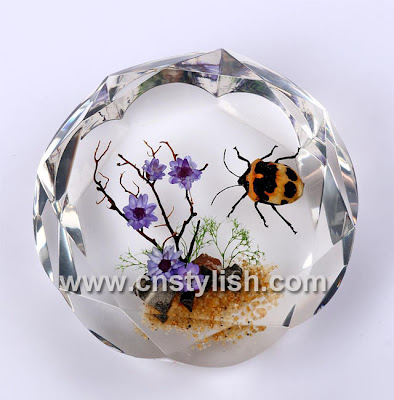 Amber Crafts Paper Weights
