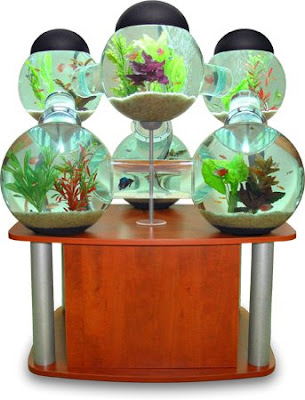 Cool Aquariums and Unusual Fish Tanks Designs (50) 20