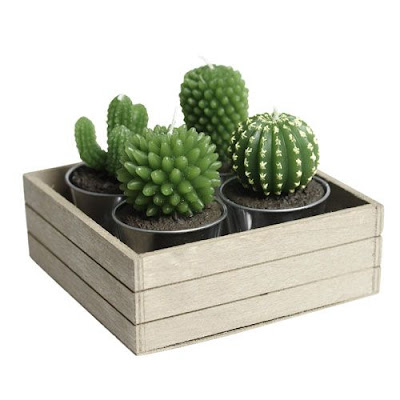 Perfect Gifts For Roommates - Cactus Candles (15) 6