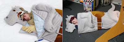 Cool and Creative Sleeping Bags (9) 1