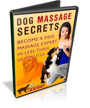 dog massage course