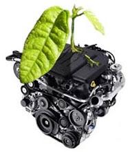 Motor biodisel