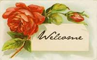 Bem vindo!