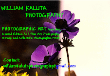 William Kaluta Photography