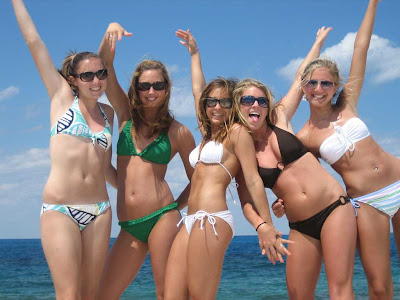 Bikini babes wallpapers 1024x768