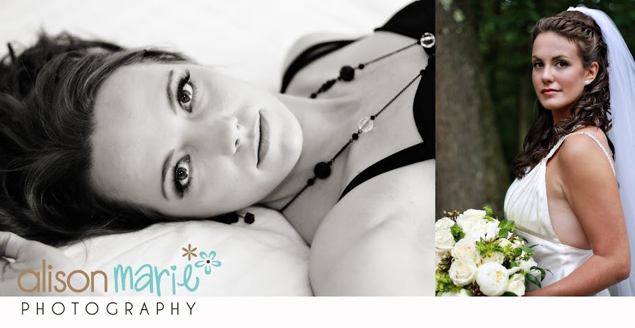 alisonmarie photography blog