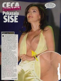 Svetlana ceca raznatovic gola