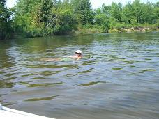 Chip taking a dip