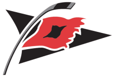 Carolina_Hurricanes_alternate_logo.png