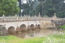 Un puente comun