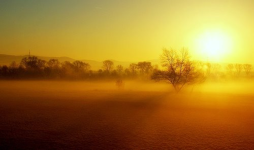 http://2.bp.blogspot.com/_NwjjlD9MtVk/SIVhIrWkdGI/AAAAAAAAAPI/dwf2GFPrCuc/s1600/misty_sunrise.jpg