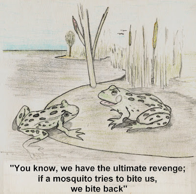 frog mosquito