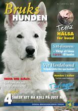 Vi gratulerer Vit Herdehundklubb