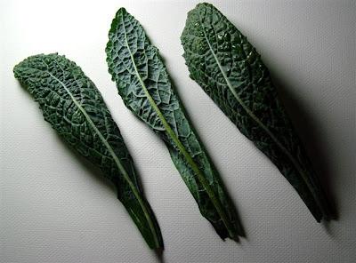 Pretty Pretty Tuscan Black Kale