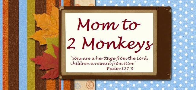 Momto2Monkeys