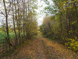 Clagett Farm path