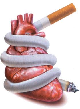 Rokok penyebab Kanker