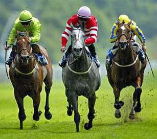 tips for horse racing
