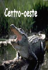 Geografia Brasileira: Centro-Oeste