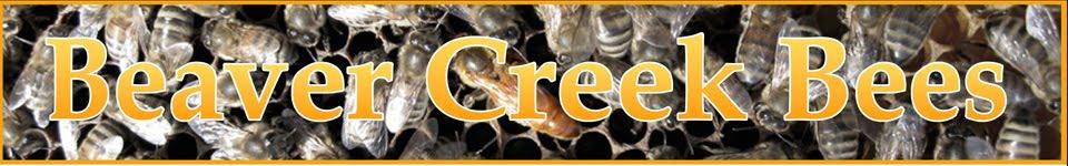 Beaver Creek Bees