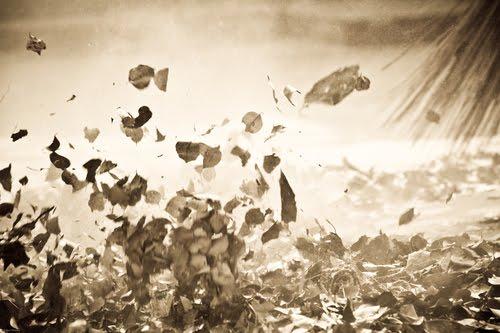 http://2.bp.blogspot.com/_O82UO0AW8Fw/TRGpstwQKbI/AAAAAAAAAKU/SPGOCZoFXFk/s1600/broom-dry-leaves-storm-fly.jpeg