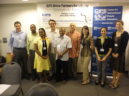 CIPE Africa Partners Round Table