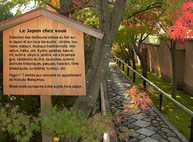 Le Japon chez vous (vidos)