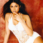 Exclusive Hot N Sexy Wallpapers,photos Of Hot Indian Actress Shamita Shetty