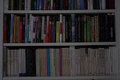 liker bøker