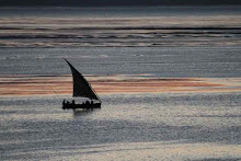 dream dhow sunset