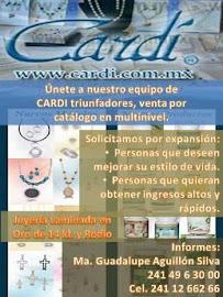 CARDI