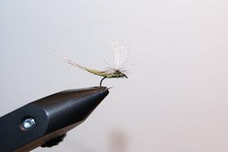 Flugfiske Flugbindning