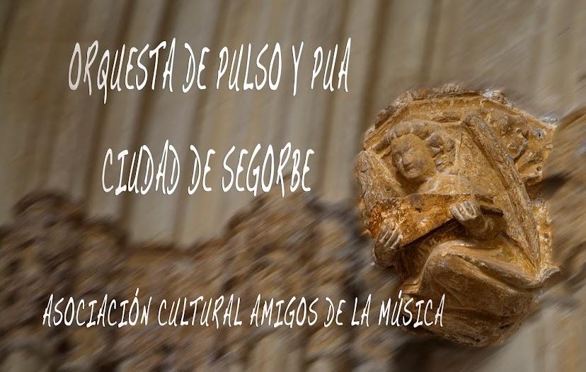 """ORQUESTA DE PULSO Y PÚA """"CIUDAD DE SEGORBE"""""""